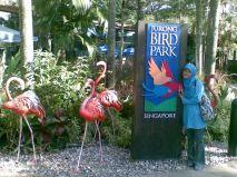 Jurong Bird Park image 1